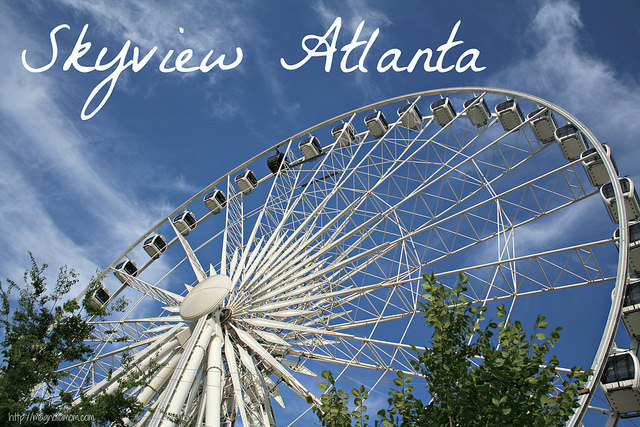 Skyview Atlanta (by Magnolia Mom)