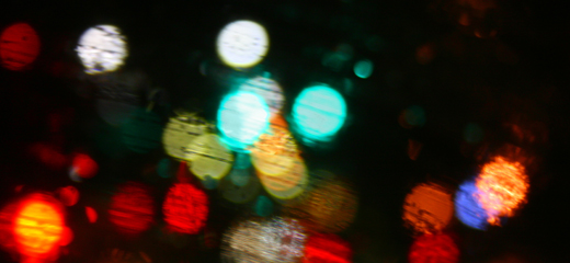 41/365.2011 {Bokeh in the Rain}